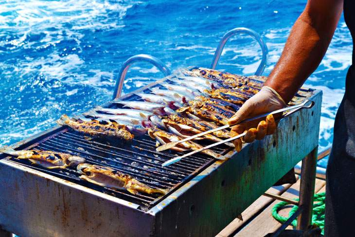 best boat grill 2019
